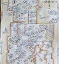 Mental Map4